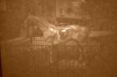 CSC_0087 (John Aho) Tags: camera box cigar cameraobscura ocalafl nikond90