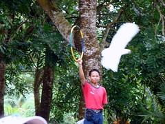 0710 {=}-81 () Tags: china travel holiday nature tour taiwan super tourist malaysia local guide kuala      lumpur                                       derek58