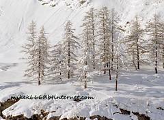 val rhemes 85 (mikek666) Tags: snow ice gelo frozen nieve sneeuw led neve eis hielo kar eira elurra ijs ghiaccio buz congelados лед χιόνι izotz πάγοσ izoztu