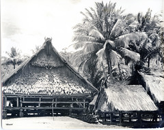 Houses in Lonja, Sulawesi
