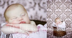 pretty in pink (Heidi Hope) Tags: ri pink sleeping baby brown girl ma pattern basket girly background lips redhead fabric newborn redhair damask portraitstudio portraitphotographer babyphotographer newbornphotographer massachusettsphotographer rhodeislandphotographer heidihopephotography newbornportraitphotographer heidihope httpwwwheidihopecom httpwwwheidihopeblogspotcom wwwheidihopecom