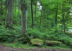 Ruine der Hankertsmhle (matthiashn) Tags: rot mill forest germany geotagged mhle ruin ruine wald hdr badenwuerttemberg photomatix rottal remsmurr canoneos450d remsmurrkreis mainhardterwald hankertsmhle