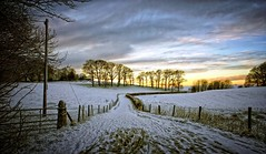 The path of tranquility. (flickrzak) Tags: trees winter snow landscape dusk lancashire lancaster agricu