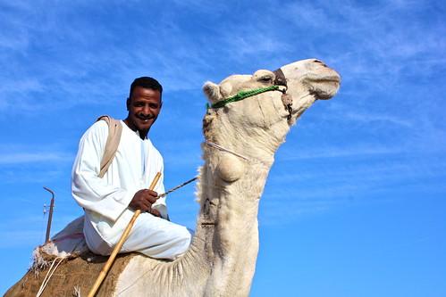 Cairo - Camel Market - 42