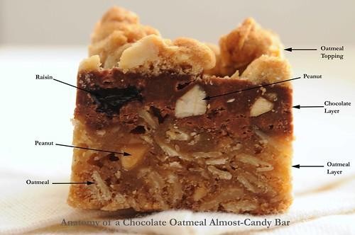 anatomy of almost-candy bar_edited-1.jpg