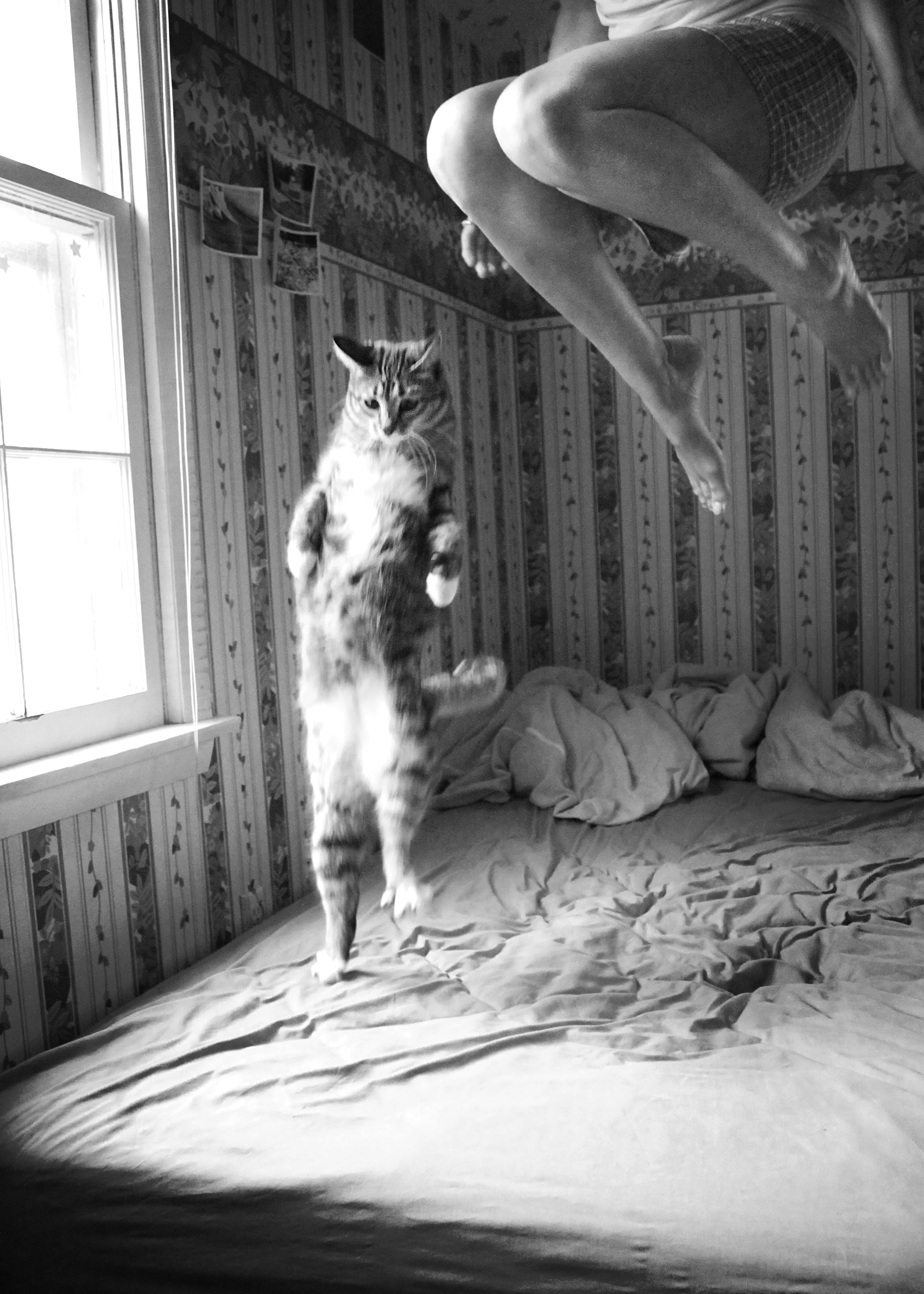 Смотреть как она прыгает на нем 12 фотография