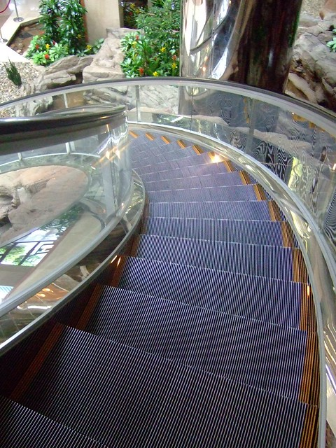 Curving escalator