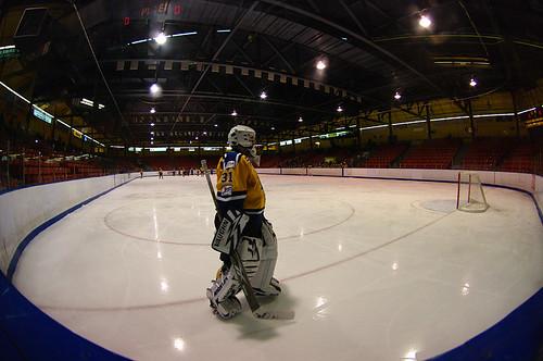 Fisheye Hockey
