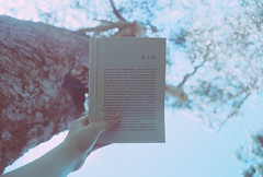 (EYLUL ASLAN) Tags: park blue summer sky tree film leaves book hand finger branches january australia melbourne harukimurakami 2010 norwegianwood chaptertwo