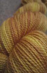 Cactus Flower-3 (TheGirlCantHelpKnit) Tags: sock yarn sundara
