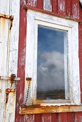 Westfjorden (Teatsche (dijkhuisphotography.com)) Tags: coast boat waterfall iceland seagull glacier puffin fjord lupine westfjords dynjandi isafjordur gletsjer ijsland wollegras gillimot drangajokull westfjorden woolygrass