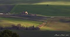 MOSAICO DI COLORI IN VAL D' ORCIA (mauro855) Tags: natura mosaico siena pienza toscana valdorcia paesaggi 2010 panorami anawesomeshot mauronizzi magicavalle