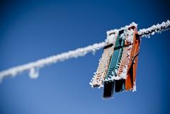 3 | together (A. Aleksandraviius) Tags: winter snow cold nature 35mm nikon frost pin clothes explore nikkor lithuania sniegas rytas 345 d60 lietuva explored nikond60 iema segtukas altis segtukai erknas f18g 35mmf18g afsdxnikkor35mmf18g nikon35mm18g