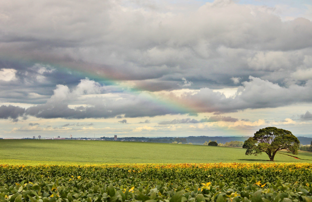 If the gold pot at the end of the rainbow were nature itself, would there be hope?