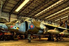 Hawker Harrier G.R.3 XV748 (Chris McLoughlin) Tags: uk england closeup day sony yorkshire jet british northyorkshire raf jumpjet a300 yorkshireairmuseum royalairforce 18mm70mm hawkerharrier sonya300 sonyalpha300 alpha300 sonydt1870mm chrismcloughlin hawkerharriergr3xv748