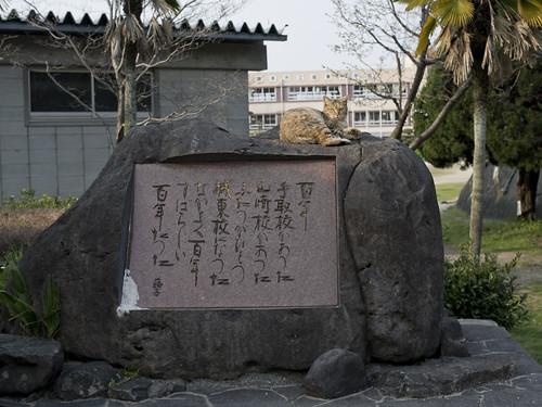 JC0322.073 熊本城東町 gxr 33M#