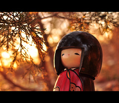 92.365 - Springtime for Yuki (Josh Liba) Tags: trees sunset red portrait cute love nature colors beautiful project japanese spring nikon focus girlfriend warm doll dof little bokeh walk smooth kawaii kimono 365 nikkor yukichan tone d90 kanojo sooc 92365 35mmf18g joshliba