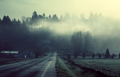 Redmond. Route. (sparth) Tags: road seattle morning blue trees fog early washington foggy 85mm redmond sammamish 85mm12l