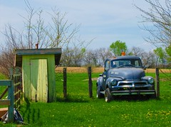 Classic Chevy and outhouse (jimsawthat) Tags: rural spring missouri outhouse blight vintagetruck jaudon