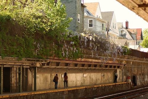 wisteria, subway station, ditmas park