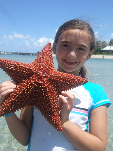 Aidan finds a big starfish