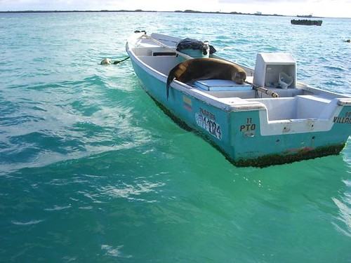Galapagos-Transport