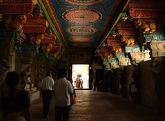 Gorgeous stone carvings in meenakshi amman temple (mjjoe2009) Tags: madurai meenakshiammantemple templearchitecture