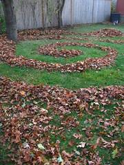 312/365 Leaf Spiral