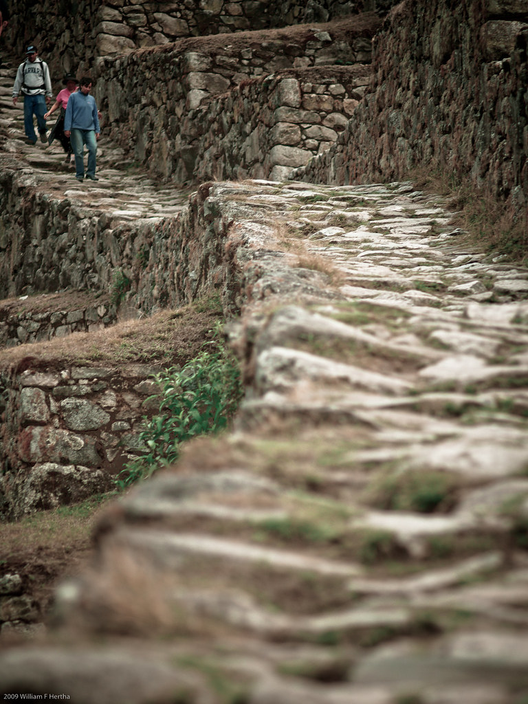 Walking along the Inca Trail