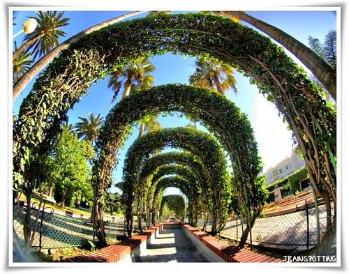 Otra forma de ver el Parque Hernández