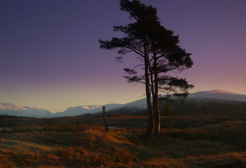 Dawn viewed from the Caledonian Sleeper