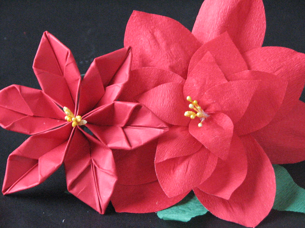 The worlds best photos of origami and poinsettia flickr hive mind 13 origami poinsettia 015 ronijj tags origami poinsettia papercrafts mightylinksfo