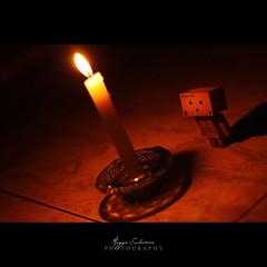 The light source (Sabotae) Tags: light orange night canon toy japanese 50mm candle dslr ef xsi danbo revoltech 450d danboard