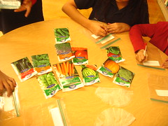 Starting seeds for our school garden