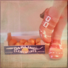 18/365 | january 18 (daisy plus three) Tags: orange texture square shoes crop clementines 38mm fluevogs project365 dianalens bylesbrumes 2010yip