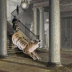 The Tiger in the Atheneum - link to image on flickr