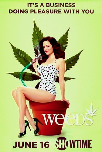 WEEDS Poster Mary Louise Parker