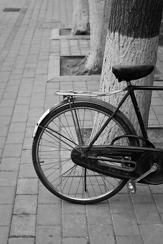 Bike (by niklausberger)