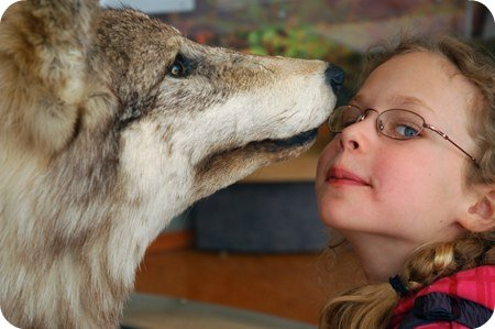 Wolf kisses