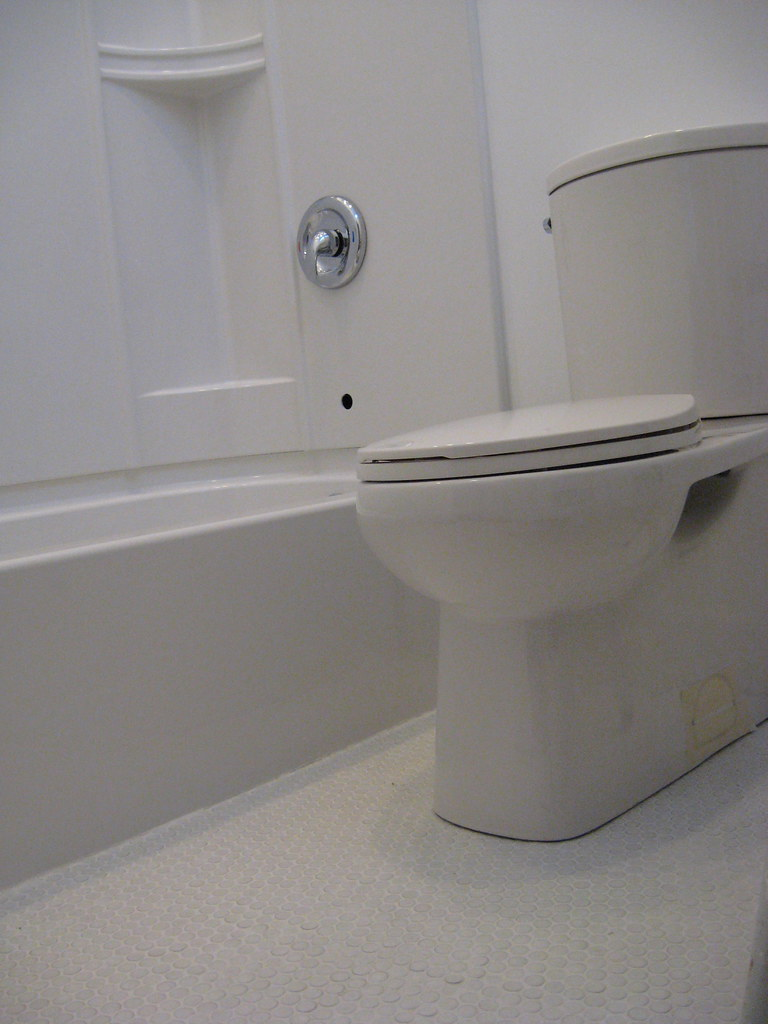 Hall Bathroom - Feb 2010