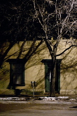 Santa Fe nights (jayRaz) Tags: road street winter snow newmexico santafe tree night streetlight downtown shadows streetlamp branches parking eerie parkingmeter 2009 streetside artificiallighting