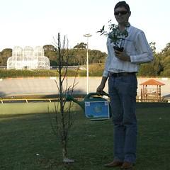 Plante Árvore sobre Rodas