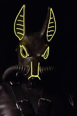Jackal 1 (rebreatherstudent) Tags: rubber gasmask drysuit aquala smashwolf wildgasmasks
