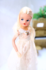 Chloe (rikusiren) Tags: doll chloe sindy