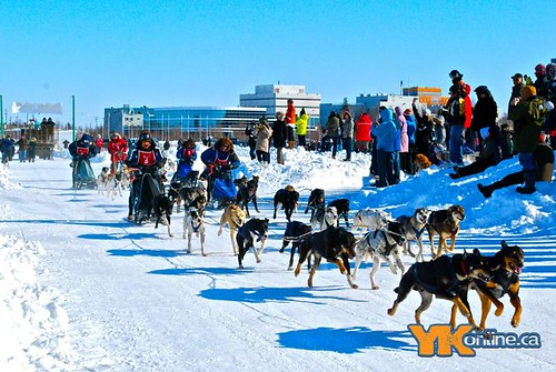 Diavik 150 Dog Race Day 3