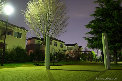 At night in the park