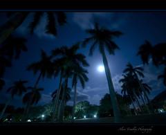 Blues at Midnight in Jibacoa (beluga 7) Tags: blues midnight jibacoa miniut