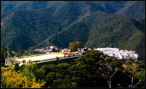Ruta de Juanar - Istán (25)