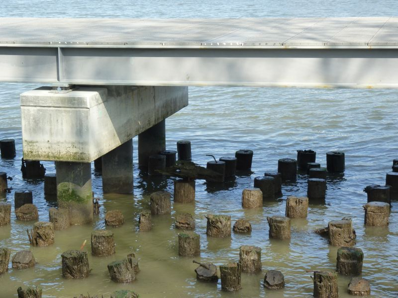 East River Pilings