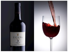 Estepa Merlot Red Wine Series